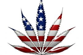 Marijuana in the USA