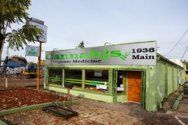 Cannabis head shop