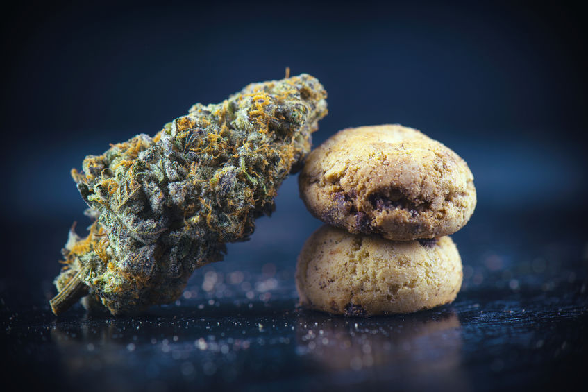Cannabis nug over infused chocolate chips cookies