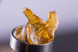 cannabis oil concentrate aka shatter on a titanium dab