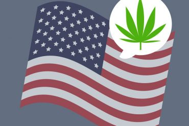 USA flag Cannabis