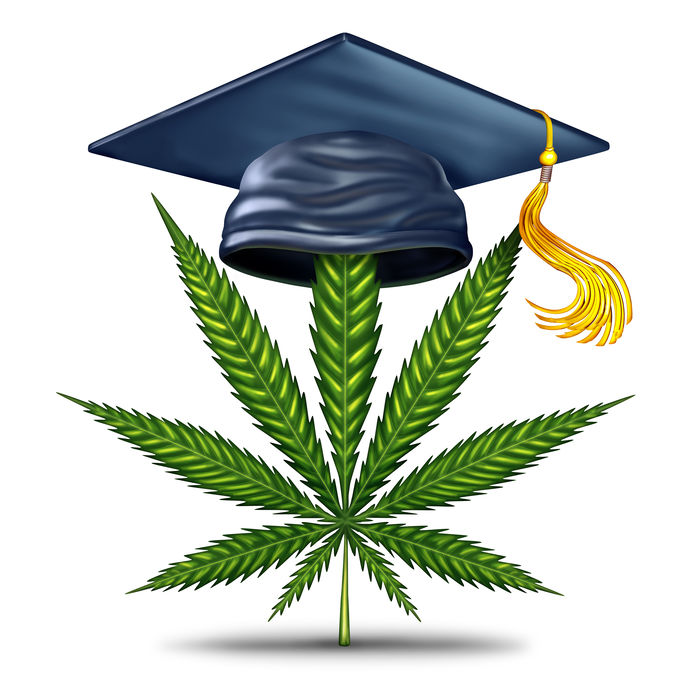 Marijuana Education