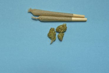 Rolling a joint is a mandatory skill for any cannabis connoisseur but choosing the right papers can really help elevate your skill level from competency to mastery. Selecting the papers that are the best for you is completely up to preference and style. Do you want your rolling papers to be easy-to-use or are you willing to fiddle a little extra for the right smoke? Do you prefer a straight joint or a cone? Whether you're a brand-new smoker or an expert joint roller looking to upgrade from the usual gas-station papers, this mini-guide featuring popular kinds of papers should get you well on your way. They're all available on vapor.com so you can stay stocked up on a wide selection of joint papers, cones, and wraps for the perfect smoke every time. Learning about different types of rolling papers (cendeced/AdobeStock) As you decide which papers you want to use, you'll want to consider things like how nimble your fingers are, how big of a joint you'll want to roll, and how much ash you want to deal with. While joints that ash a lot are fine outdoors, many people try to keep it to a minimum when they smoke inside. If you like smoking with others, be patient and learn the technique behind rolling a j before you dive into thinner, fancier papers. While they may love to spark up with you, they might still flame your poor rolling skills if you volunteer as roll-master. Natural hemp rolling papers Skill level: easy Hemp is an easy choice for rolling a joint—you're essentially covering your cannabis in more cannabis, although it's gone through a few extra steps. Since they're sturdy and easy to roll, hemp is a great choice if you're venturing away from wood-pulp papers for the first time. Hemp papers have a mild flavor that doesn't get in the way of the taste of your herb. There's also an added bonus that the nerds amongst us might enjoy. Hemp crops are space-efficient, fast-growing, and good for soil conditions, so they can be a more sustainable choice than standard papers.